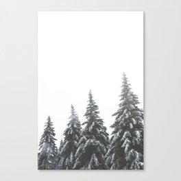 Frozen Spruces Canvas Print