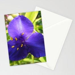 Spiderwort Flower Stationery Cards