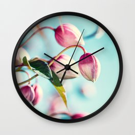 Macro of pink Clematis Montana flower buds from blossoming plant in spring Wall Clock
