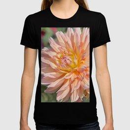 Delicate Pink Petals T-shirt