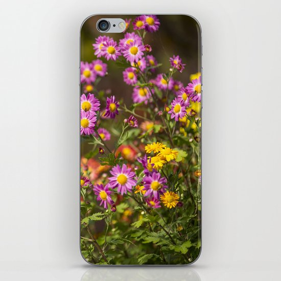 Plant A Flower iPhone & iPod Skin