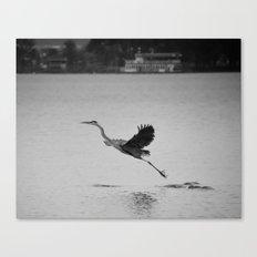 Blue Heron on Canandaigua Lake 2013 Canvas Print