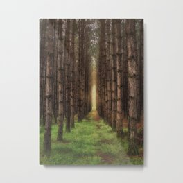 A Morning Walk Metal Print