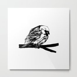 Bird Lover 2 Metal Print