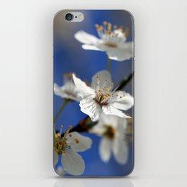 Weißdorn iPhone Skin