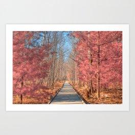 Jesup Boardwalk Trail - Tickle Me Pink Art Print