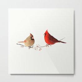 Red cardinal birds Metal Print