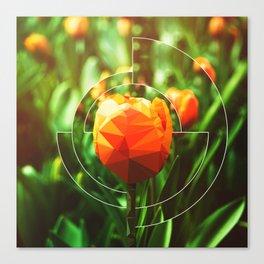 Tulip Imposter Canvas Print