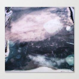 Polariod 600 Canvas Print