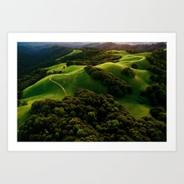 skyline blvd Art Print