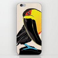 coco iPhone & iPod Skins featuring Coco by Nicholas Darby