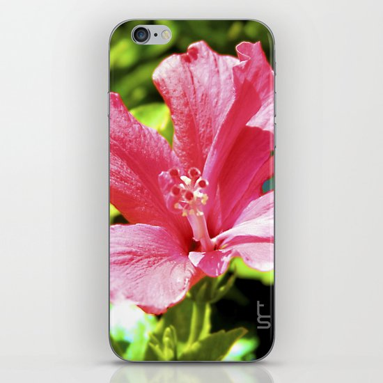Hibiscus II iPhone & iPod Skin
