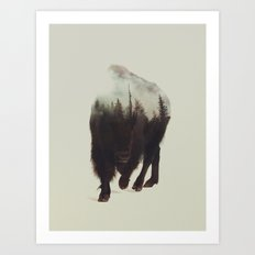 Night Bison Art Print