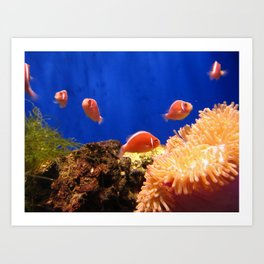 The world under the water Art Print