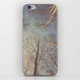 Trees ∆ iPhone Skin
