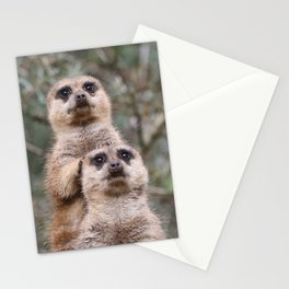 Meerkat_002_by_JAMFoto Stationery Cards