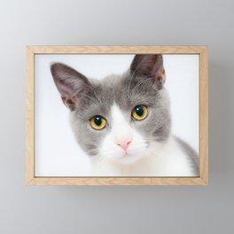 Cute Cat Framed Mini Art Print