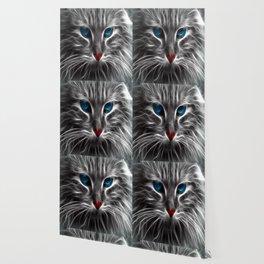 Cat Blue Eyes Feline Pet Animal Blue Gata Wallpaper
