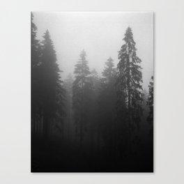 Fog Fog Fog Canvas Print