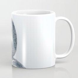 Snake Bird: Anhinga Coffee Mug