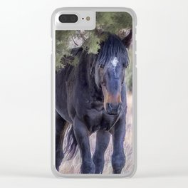 South Steens Band Stallion Approaches Clear iPhone Case