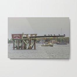 Cormorants on the Greasy Pole Metal Print