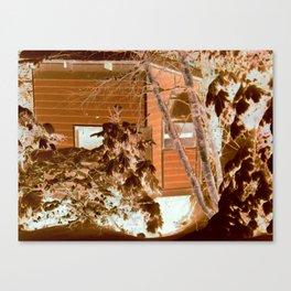 A Cabins Dream Canvas Print