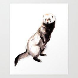 Steppen ferret (Mustela eversmanii) Art Print