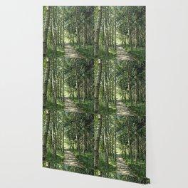 walk in the bog Wallpaper
