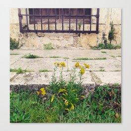 The Flower Lane Canvas Print