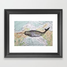 Narwhal in the Arctic Framed Art Print