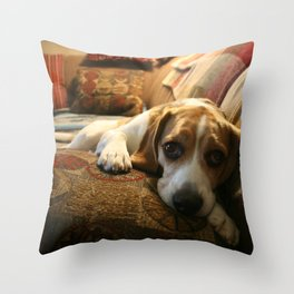 Sleepy Bruno  Throw Pillow