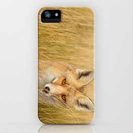 The Catcher in the Grass iPhone Case