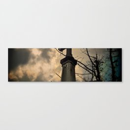 thousand years series (thorn) Canvas Print