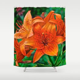Orange Tiger Lilies - The Peace Collection Shower Curtain
