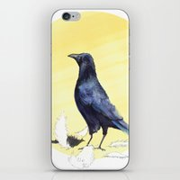 crow iPhone & iPod Skins featuring Crow by ankastan