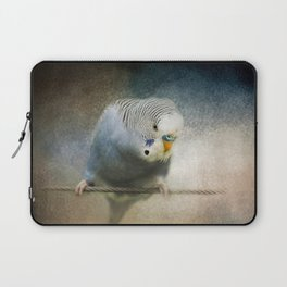 The Budgie Collection - Budgie 3 Laptop Sleeve