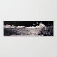 Lilly Pilly Gully Canvas Print