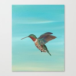 Hummingbird on the Move Canvas Print