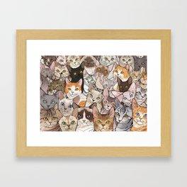 A lot of Cats Framed Art Print