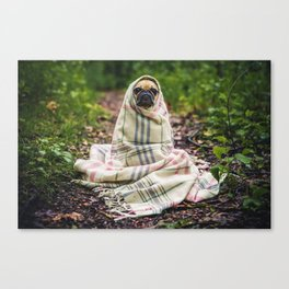 Snug pug in tartan Canvas Print