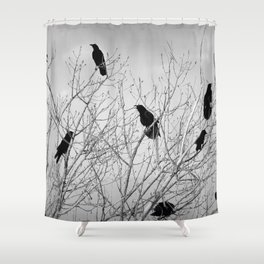 A Murder of Crows Shower Curtain