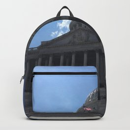 Democracy's Home Backpack