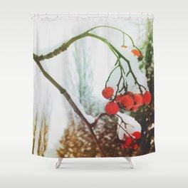 in winter Shower Curtain