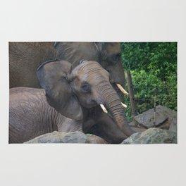 Elephants Eye Rug