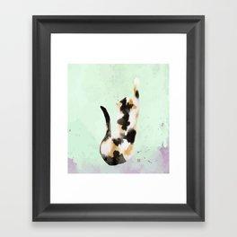 Calico kitten Framed Art Print