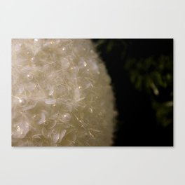 Decoration Canvas Print