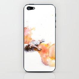 take off in flight iPhone Skin