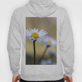 Delicate daisy flowers Hoody