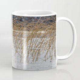 Red Tail Fox on Fish Hook Lake Coffee Mug